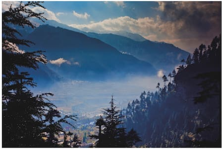Hotel Cibori is a most beautiful hotels in Manali - Nasogi - Bed & Breakfast