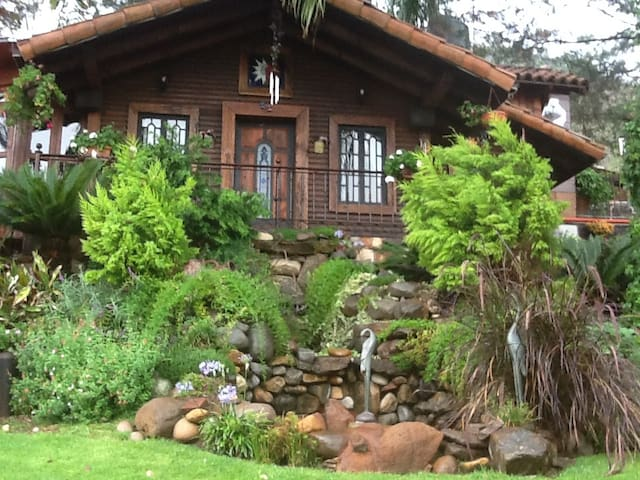 Las cabañas de tus sueños - Uruapan - Cabaña