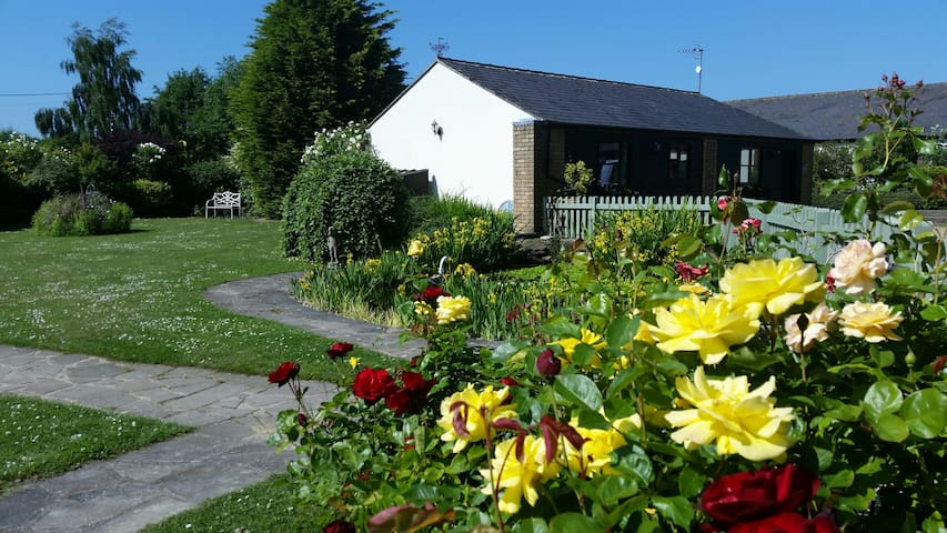 Foxglove Cottage Pet Friendly Holiday Home