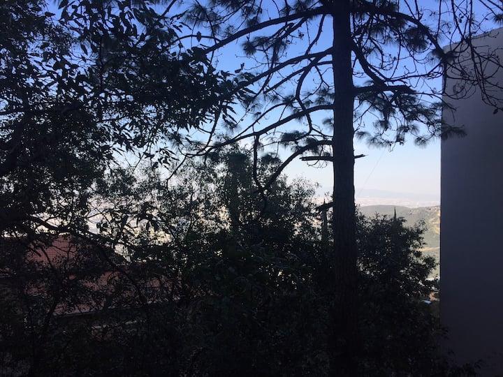 Departamento con vista en el bosque de Chipinque