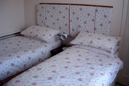 Cosy town house with friendly hostess. - Petersfield - Bed & Breakfast
