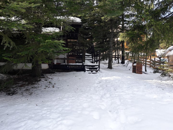 Chalet Chabanon-Selonnet 4 couchages