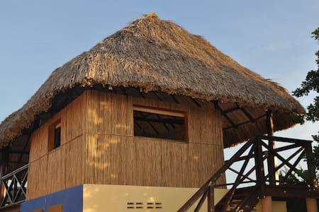 Gemütlicher Adventure Palapa Raum - Andere
