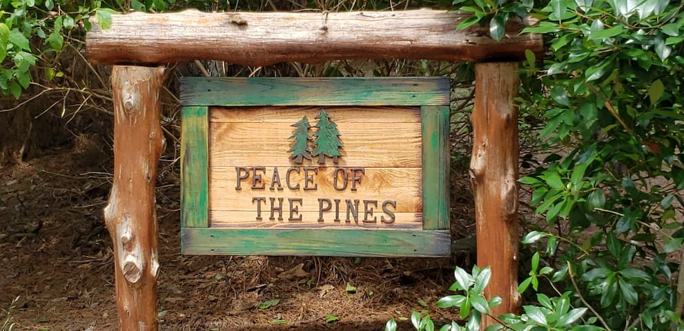 Peace of the Pines