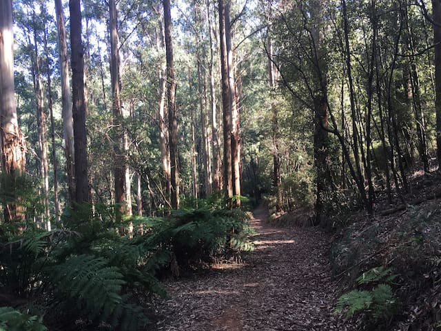 right on the doorstep of  Doongalla Forest National Park with beautiful walking tracks