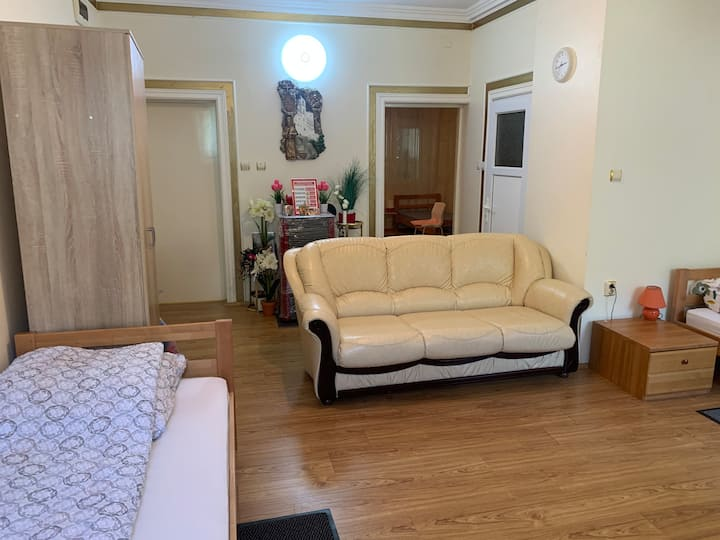 Apartman Pejica