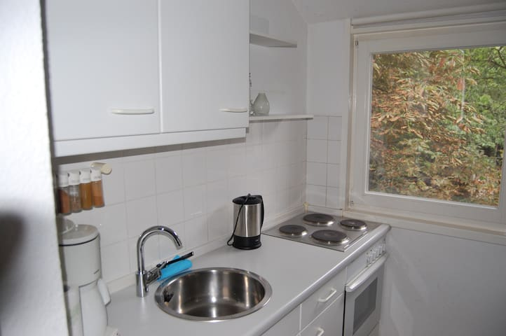 LINNEHUS 5 - Worpswede - Apartment