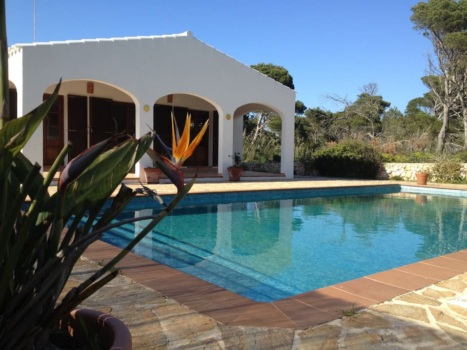 House with garden and pool casas en alquiler en cala for Aki piscinas hinchables