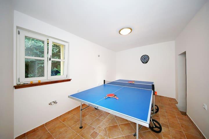 Cosy Villa Rustica Croatia - Vir - 別荘