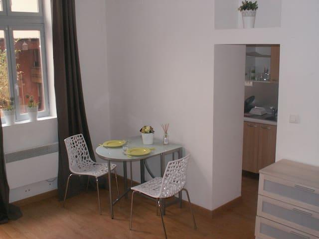 Studio de charme dans le coeur historique d'Albi - Albi - Apartemen