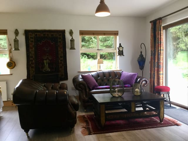 Sitting area showing one armchair and one two-seater sofa with views of wildflower meadow and views of forest through the patio doors.