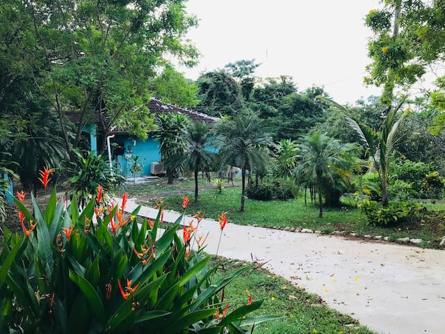 SUNNY STUDIO IN TROPICAL PARADISE w POOL & VIEWS *