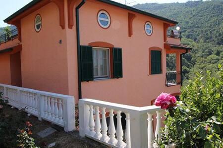 Красивые аппартаменты с бассейном - Vallebona - Apartamento com serviços incluídos