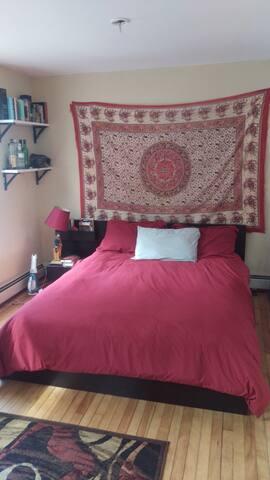 Sunny, quiet apartment near Harvard - Cambridge - Apartment