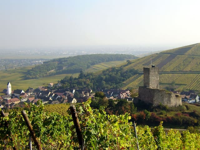 4*route des vins,calme,terrasse,5kms Colmar