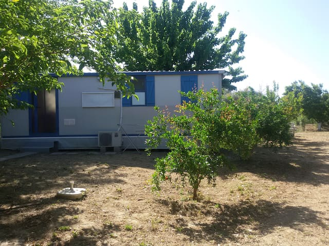 Independent rooms and yard near to Mavrovouni - Mavrovouni - Bed & Breakfast