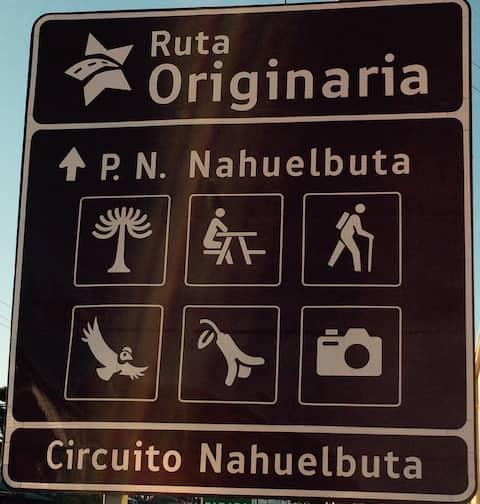 Cabaña vecina al PN Nahuelbuta Refugio Nahuelbuta