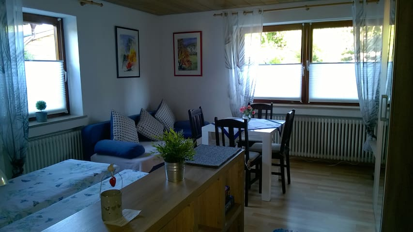 Sunny 1-Room Flat with Terrace