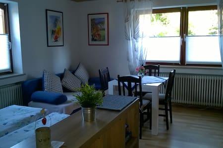 Sunny 1-Room Flat with Terrace - Kirchberg an der Iller