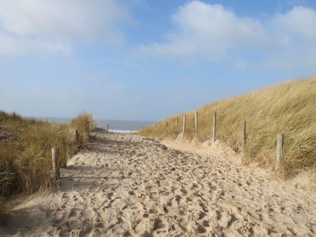 Vrijstaand zomerhuis in duingebied aan strand/zee - Egmond-Binnen