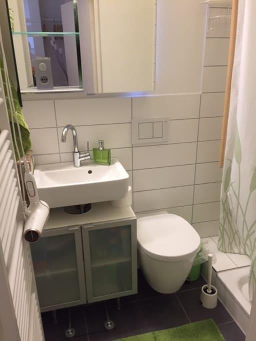 Bad: mit Fenster , Designer Spiegelschrank, Dusche.