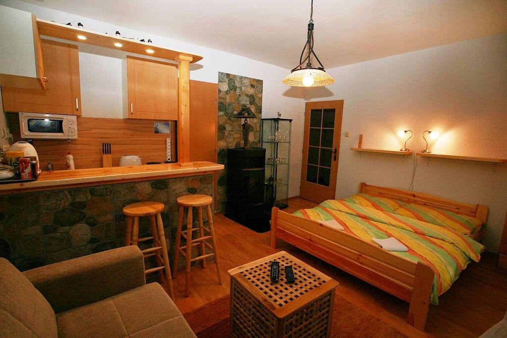 Studio Apartment TRIP