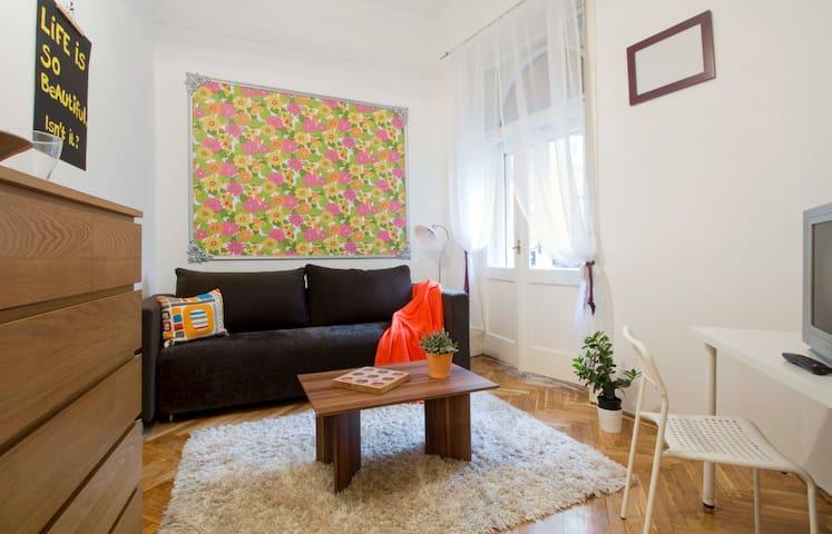 Cute, central one bedroom flat - Budapest - Lägenhet