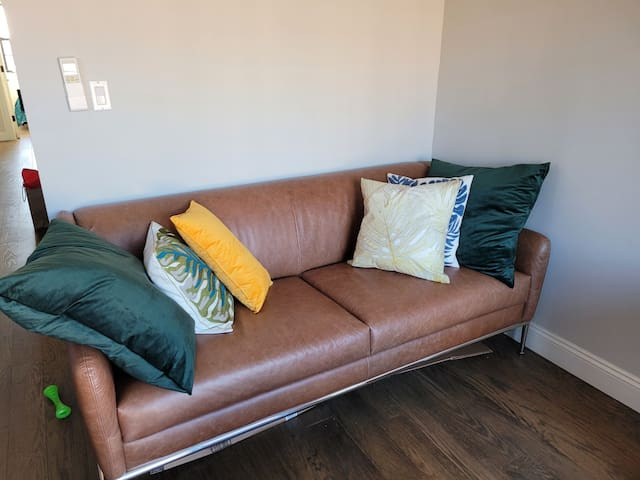 """Living Room includes 55"""" TV, north facing for natural light and views of the BK skyline"""