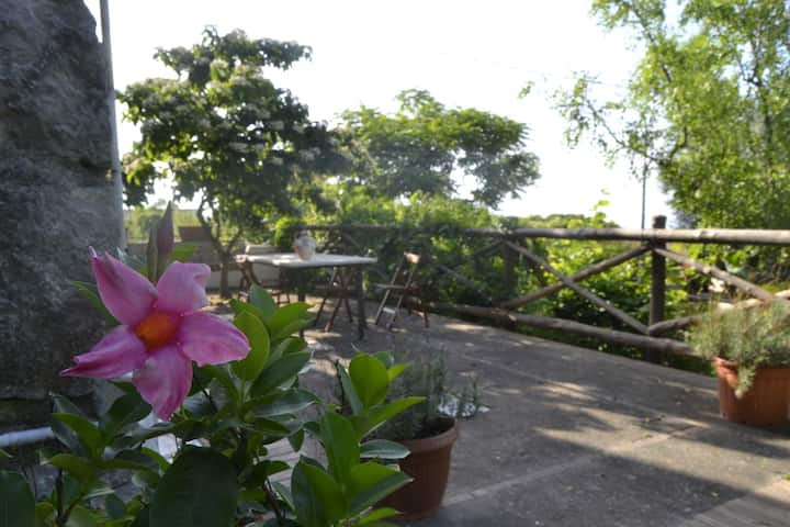 """Casa 1787 """"view and outdoors"""""""