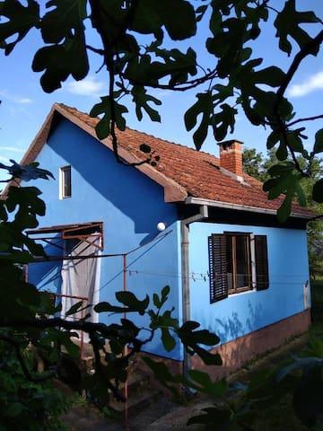 общий вид дом от входа в калитку