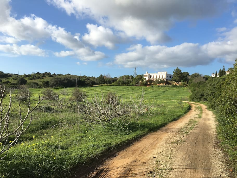 Quinta Lualuz