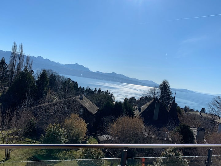 Luxury lakeview appartment near Lausanne.