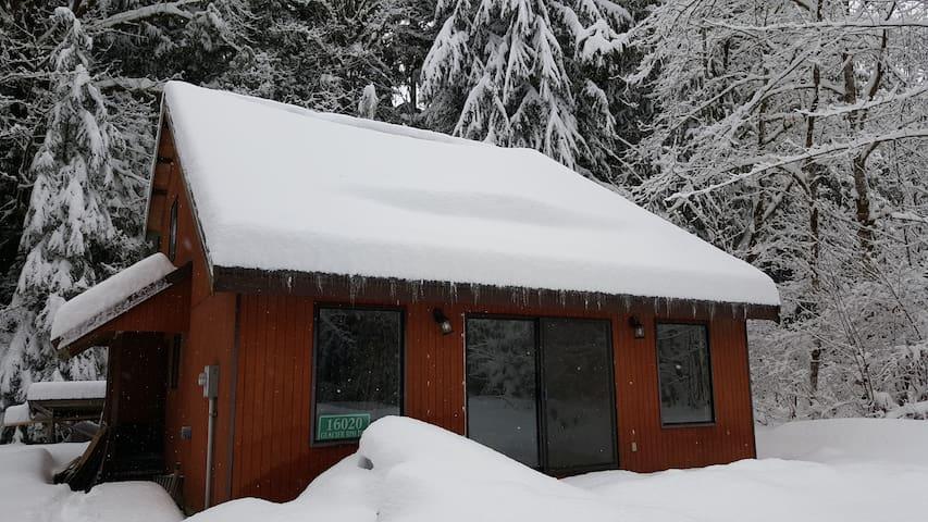 Quiet Cabin in Mt. Baker - Deming - Cabin