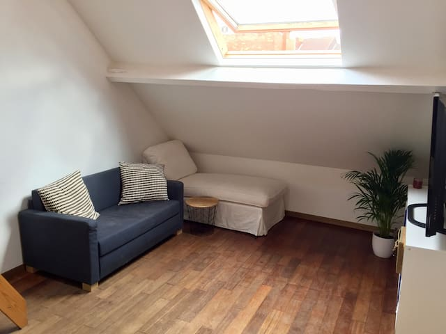 Full renovated studio with private rooftop terrace