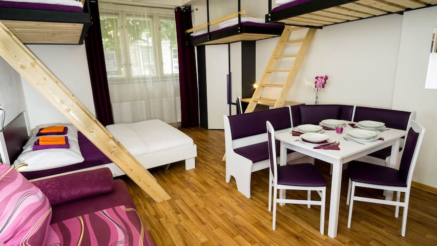 Up to 7 people, close to Prague castle and Airport