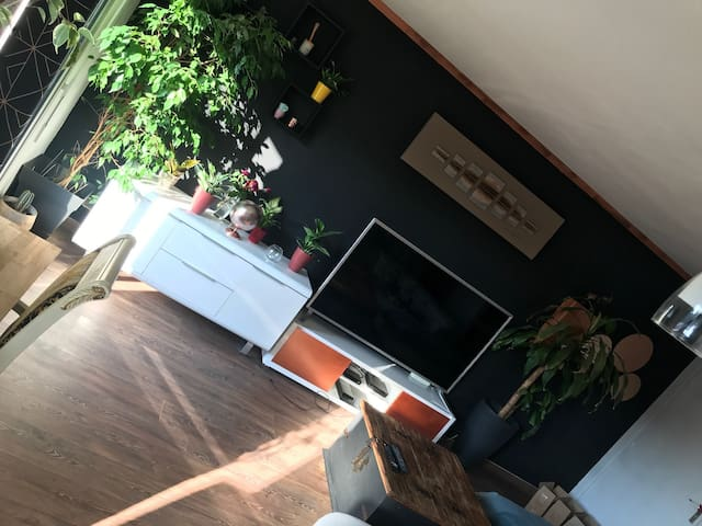 belle appartement proche cannes