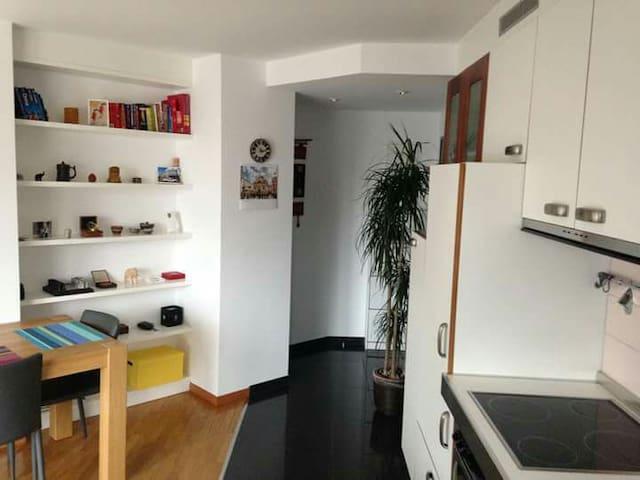 Sonnige und cozy Wohnung in Zürich Wipkingen 40m2 - Zürich - Wohnung