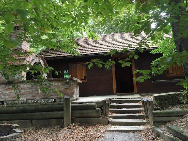 Brvnara (wooden house) - Križanec - Přírodní / eko chata
