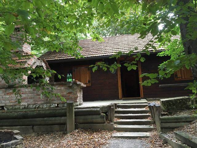 Brvnara (wooden house) - Križanec - Alojamento na natureza