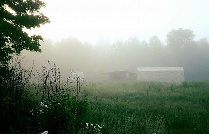 SunRun Farms Forest Campsite