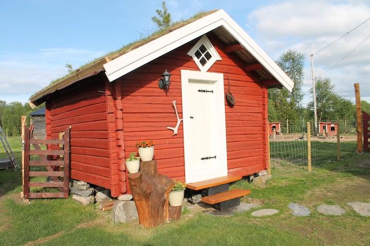 La cabane du musher