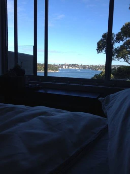 Morning view from bed