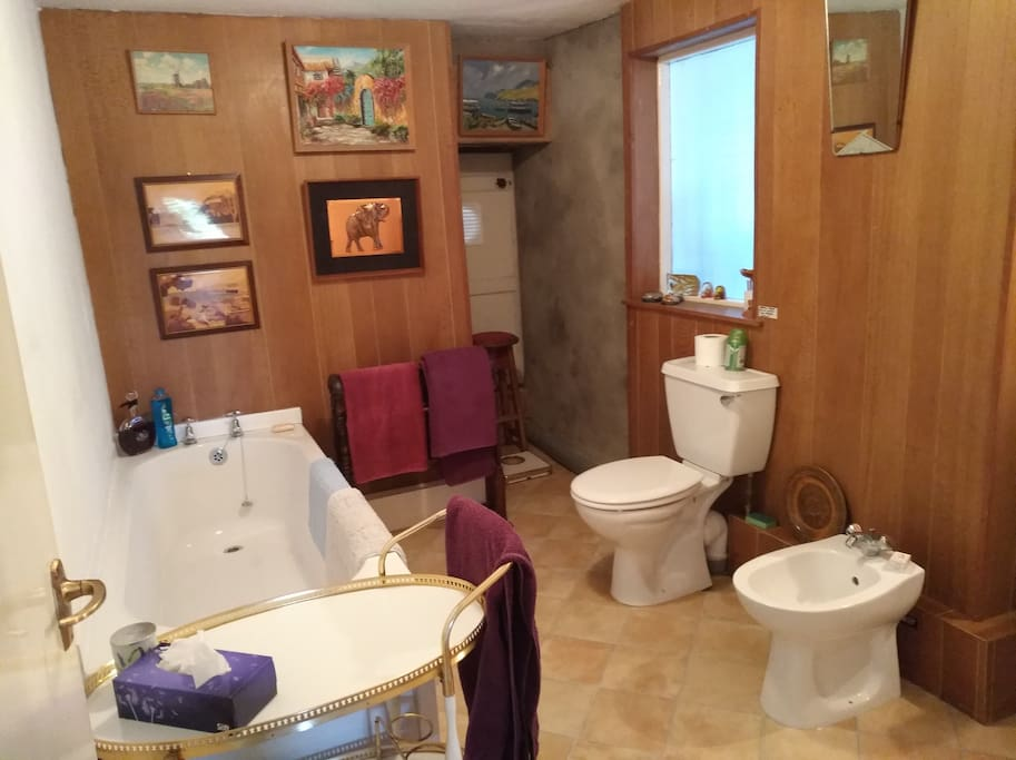 The second bathroom has a shower, WC and handbasin