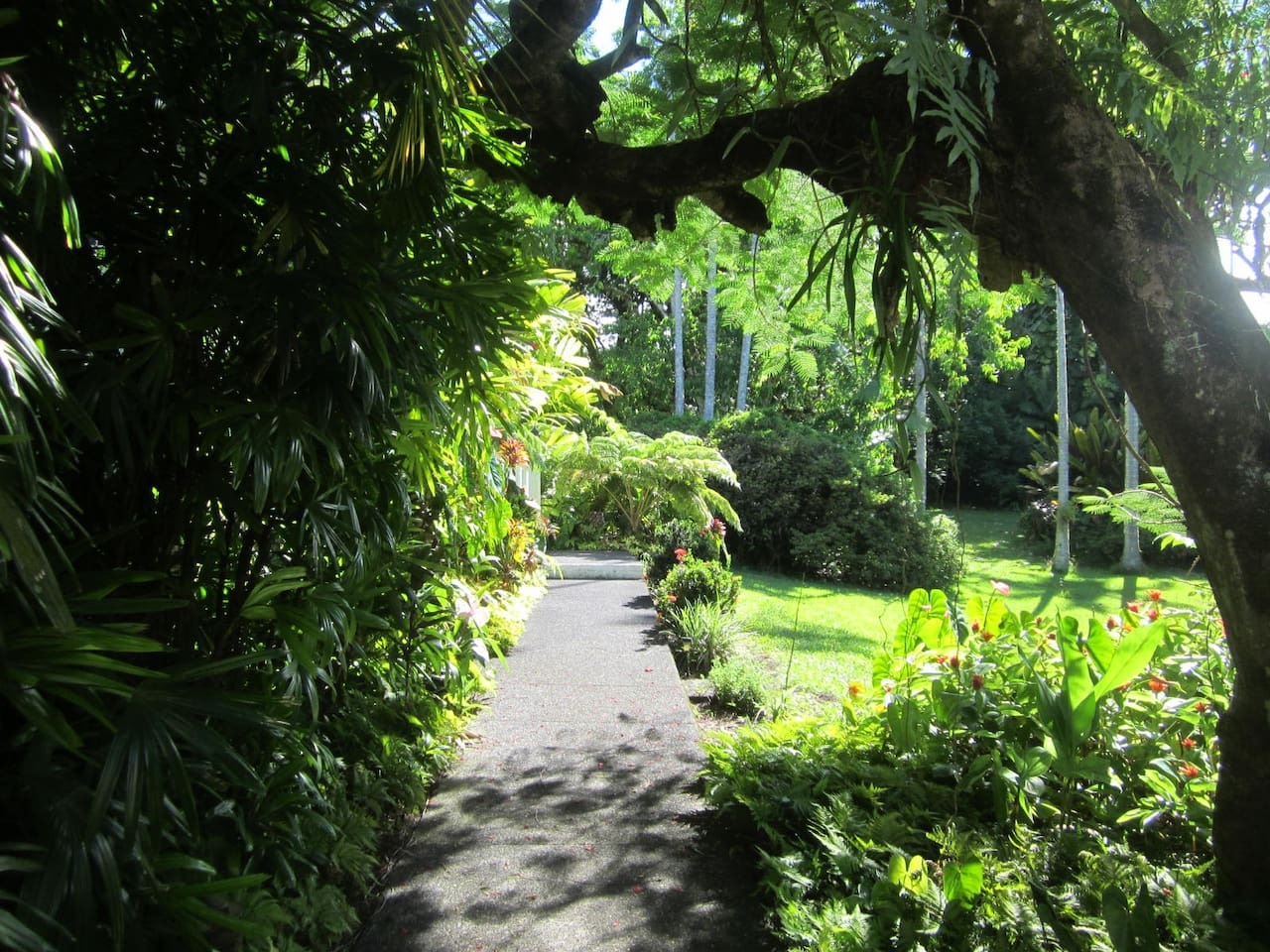 Along the path to Shipman House's Guest Cottage.