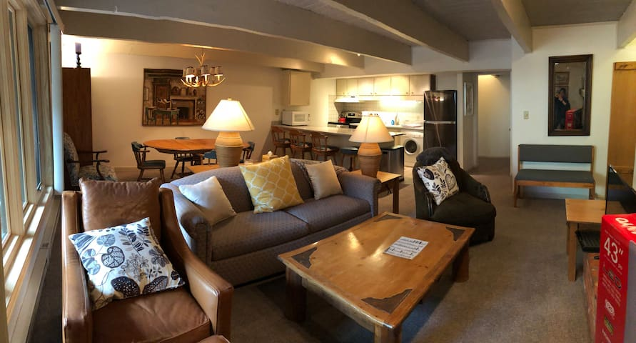 #4 Newly Updated Condo in Downtown Aspen!