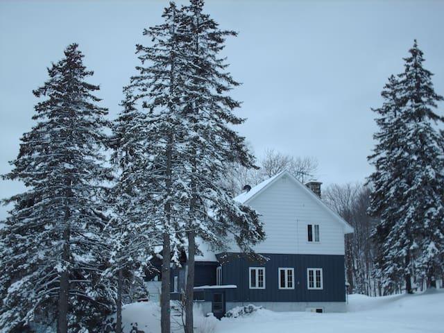 La Cedar Double, Cedar Lodge