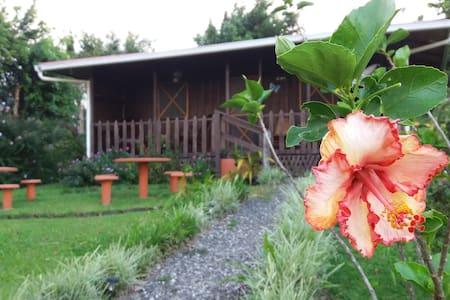La cabaña se llama Rancho de Moncho - Bijagua