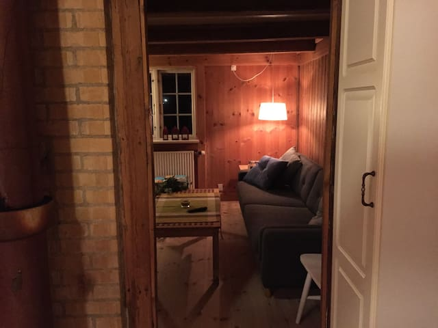 The view from the kitchen into the livingroom.
