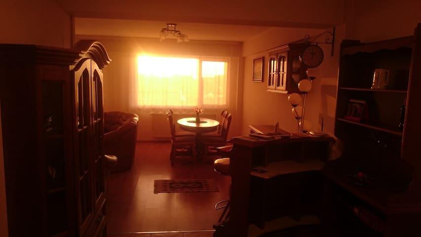 Spacious Luminous Apartment in Gated Property - Baia Mare - Apartment