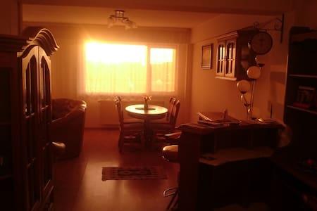Spacious Luminous Apartment in Gated Property - Baia Mare - Pis